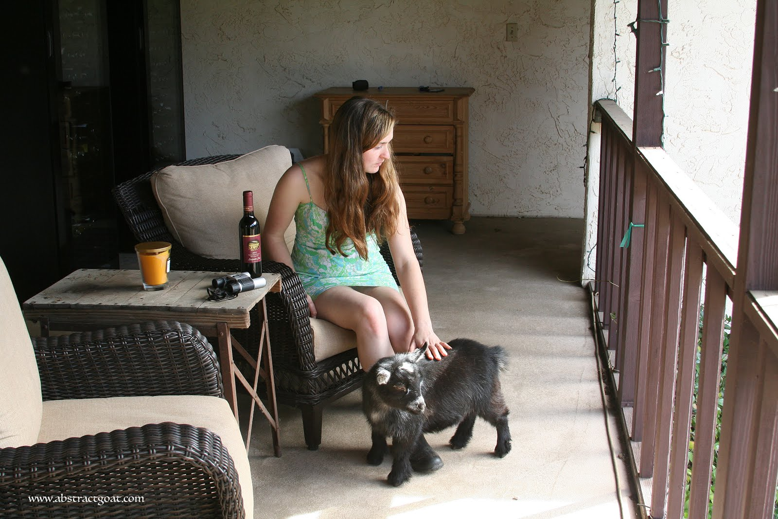 Port on the Porch with Wego