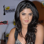 South Indian Beauty Deeksha Seth's Awesome Boobs Show At a Press Conference