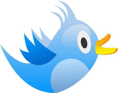اكتشف أول تغريدة قمت بنشرها على حسابك بتويتر
