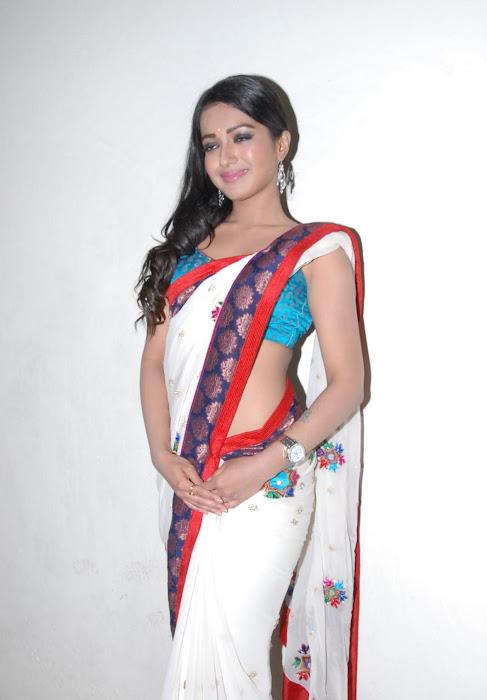 katherine saree actress pics