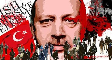 الأميركي شتاينبرغ: تركيا تشكل الداعم الرئيسي والشريك المقرب لتنظيم داعش الإرهابي