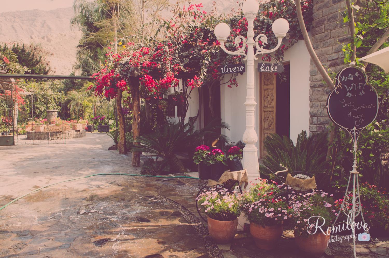 El jard n vivero caf romilove photography for Vivero tu jardin