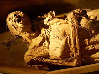 Momias de Guanajuato (Vídeo)