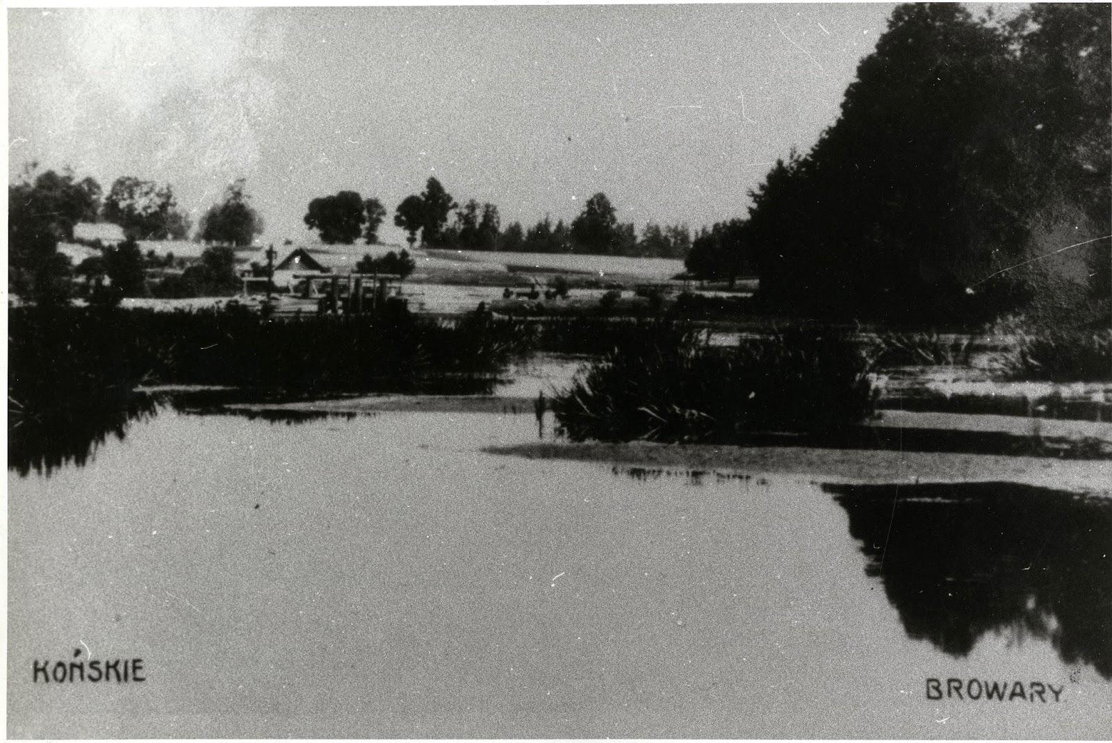 Browary, staw. po lewej stronie widoczny mostek i zabudowania młyna. Pocztówka, foto. Antoni Borowiec, kopia w zbiorach Ryszarda Cichońskiego.