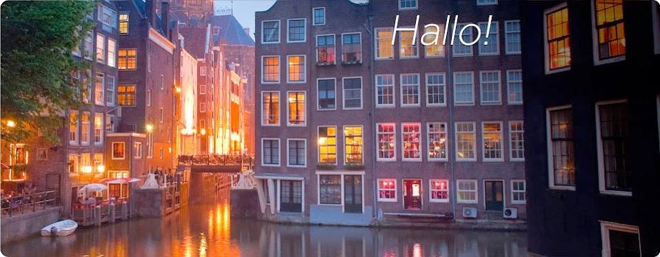 Holandes 3 Niveles (Dutch) rosetta stone descarga gratis mega
