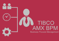 TIBCO AMX BPM Videos