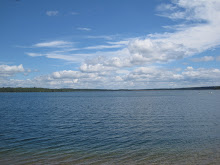 A lake in Northern Minnesota