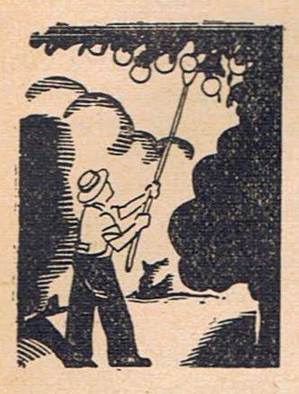 Le Calendrier du Bon Jardinier - SEPTEMBRE