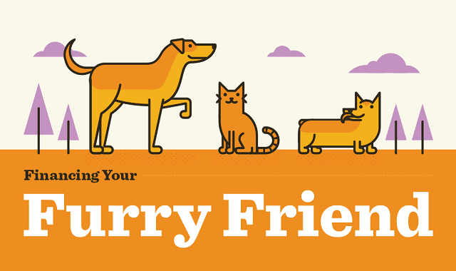 Financing Your Furry Friend