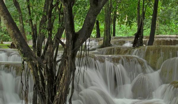 Cascadas Tad Sae, Laos