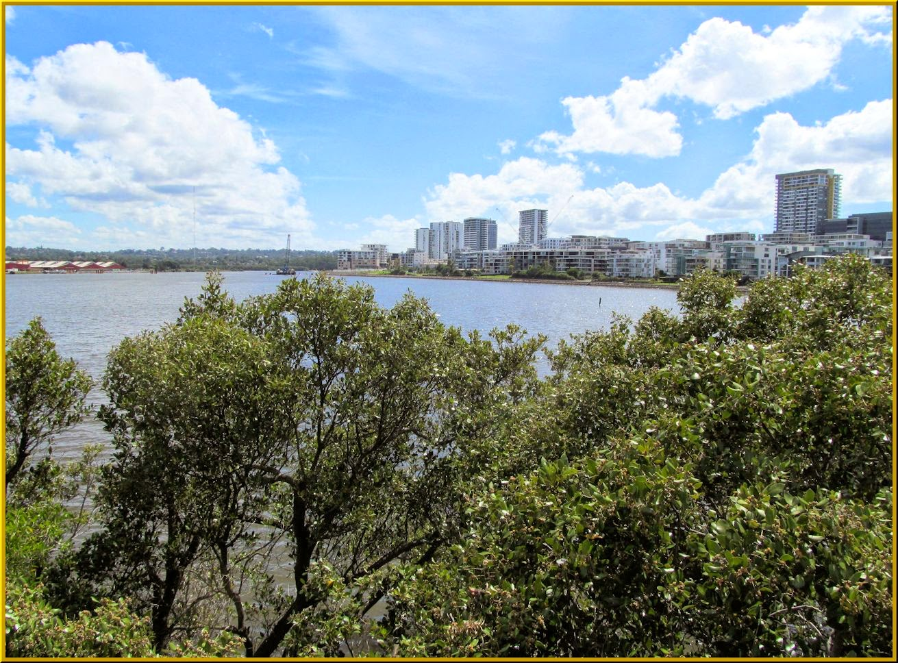 Homebush Bay From Bicentennial Park