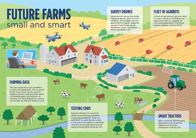 Future Farms - small and smarts