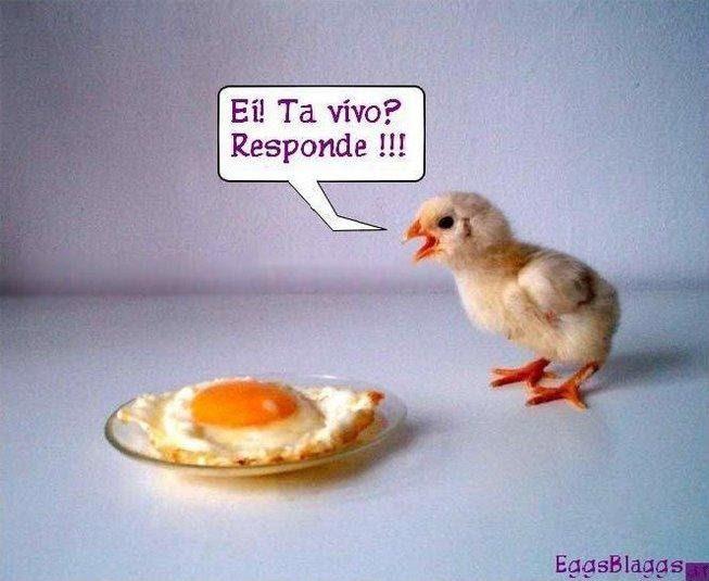 Eggs Blaggs Sem Cebola