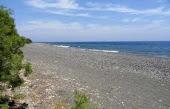 avis beach