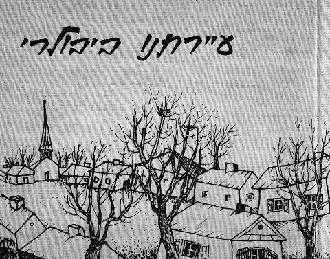 ספר יזכור לעיירה ביבולרי ברומניה בה חיה משפחתו של ינקו סולומון