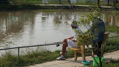 cần câu cá giá rẻ