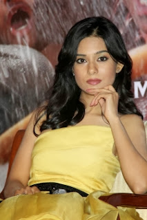 who is Amrita Rao boyfriend