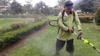 Lowongan, Kerja, Ke, Malaysia, Pemotong, Rumput, Taman
