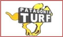 TURF PATAGONIA