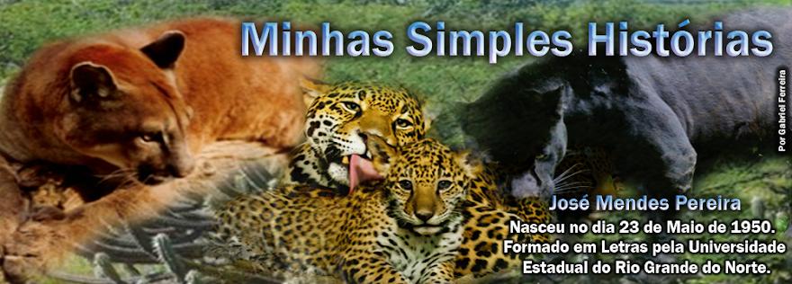 MINHAS SIMPLES HISTÓRIAS - JOSÉ MENDES PEREIRA