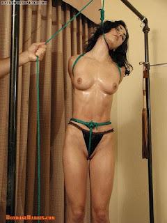 Sexy bitches - sexygirl-Miscellanea_bn16-711976.jpg