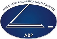 ABP - FUTEBOL DE MESA PASSO FUNDO