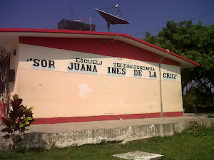 SOR JUANA INS DE LA CRUZ