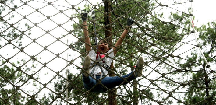 Begin with Adventure at TREETOP *AGAIN*