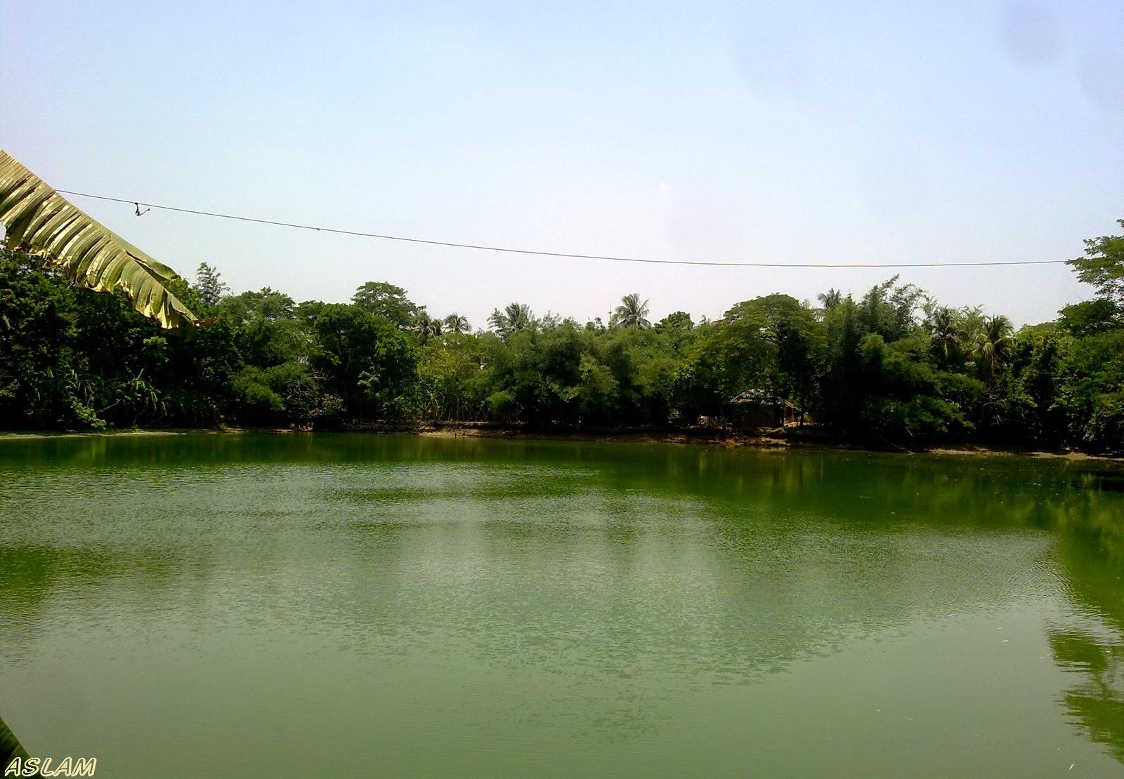 Titya pond