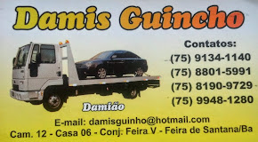 Damis Guincho