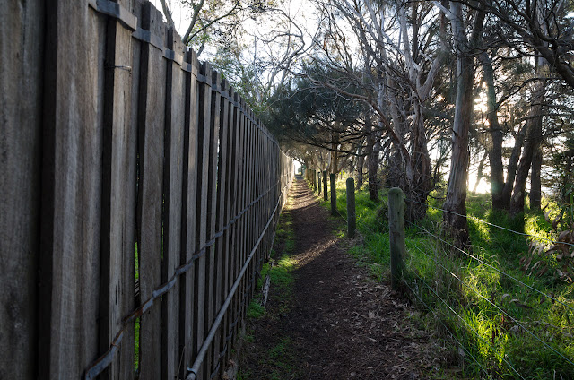fence line next to great south west walk track
