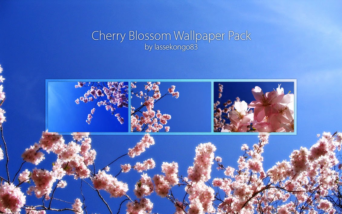 Cherry Blossom Wallpaper Pack