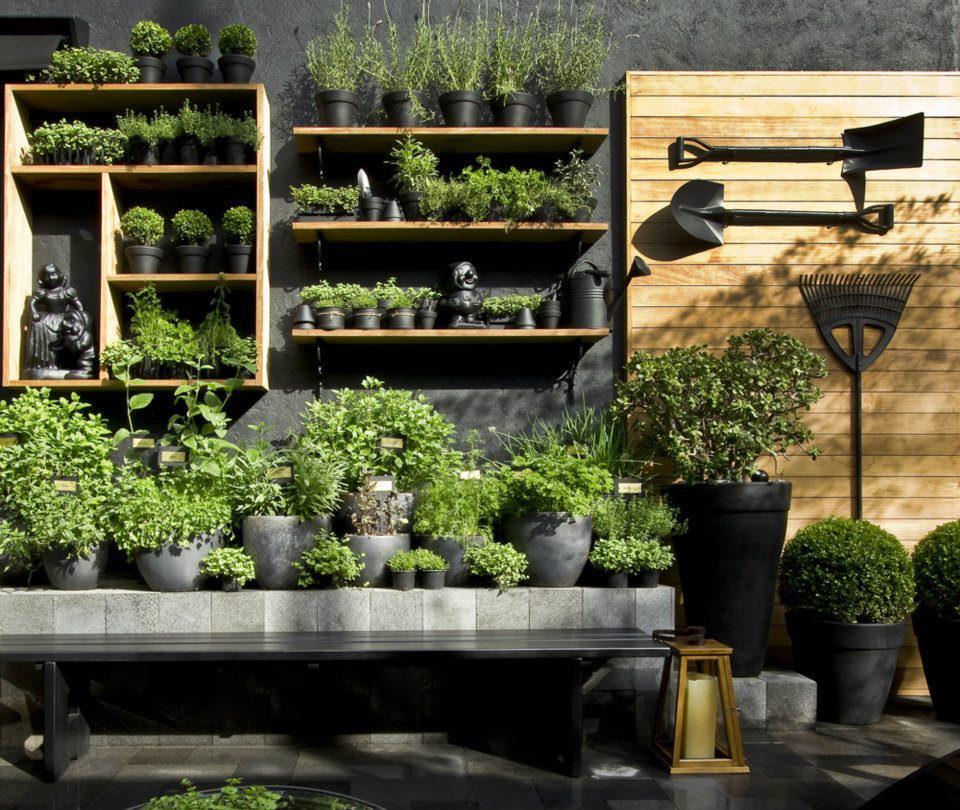 Plans For A Spring Vegetable Garden