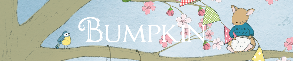Bumpkin Bears and Friends