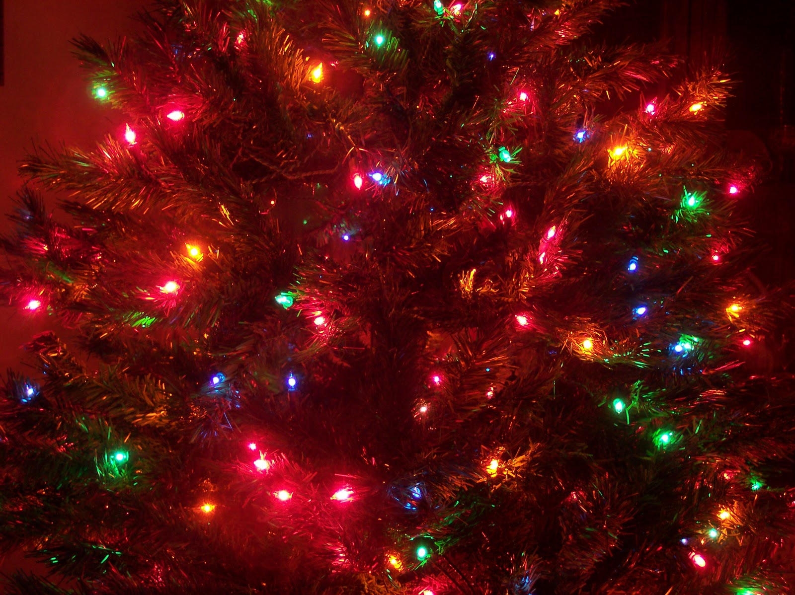 The history of christmas tree lights christmas canada for Pretty christmas pics
