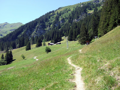 Alpine meadows above the Kiental