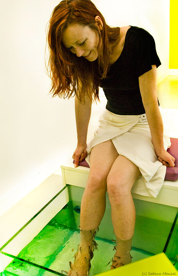 Psynopsis Fish Pedicure