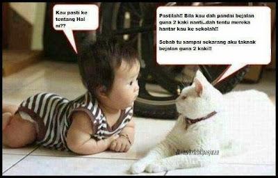 Bayi dan Kucing Comel
