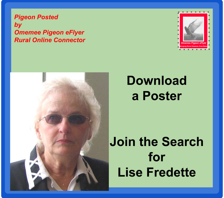 image Omemee Posted: Will You Join the Lise Fredette Search? Download a Poster