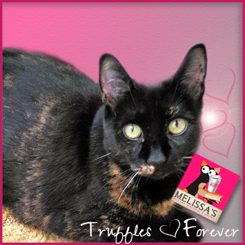 Forever Young, Precious Truffles 7/7/15