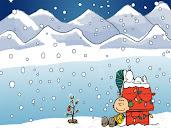 #3 Charlie Brown Wallpaper