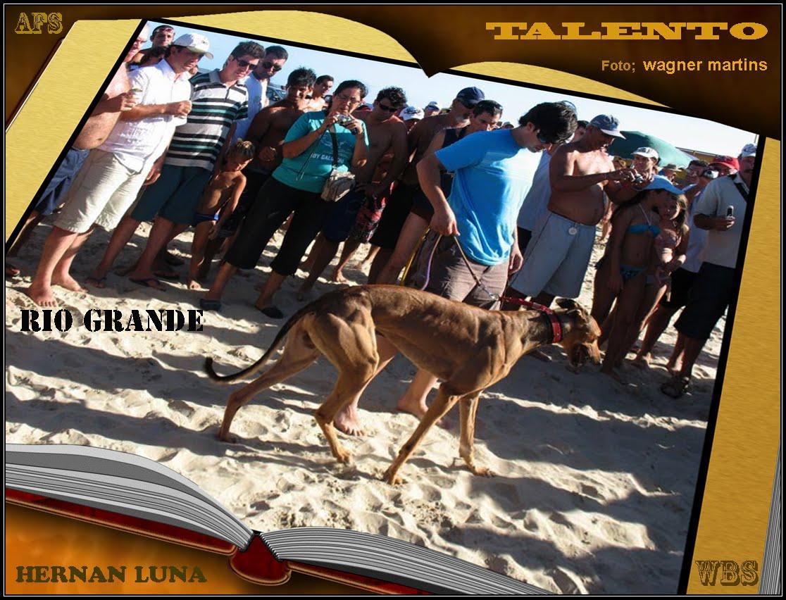 HERNAN LUNA Y TALENTO - CLASICO CIUDAD DE RIO GRANDE - BRASIL