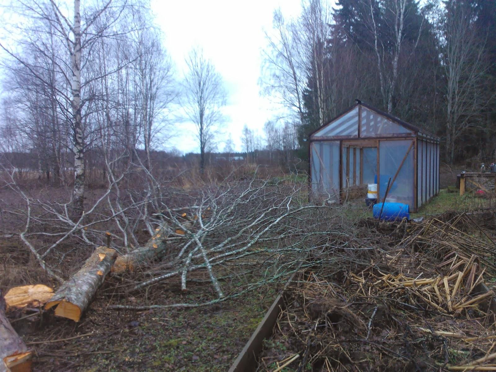 Växthus Odla : Lev mer på mindre december