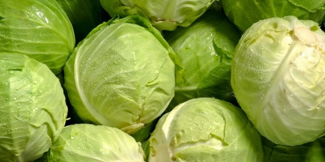7 Reasons To Eat Cabbage