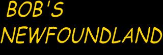 bobsnewfoundland.com