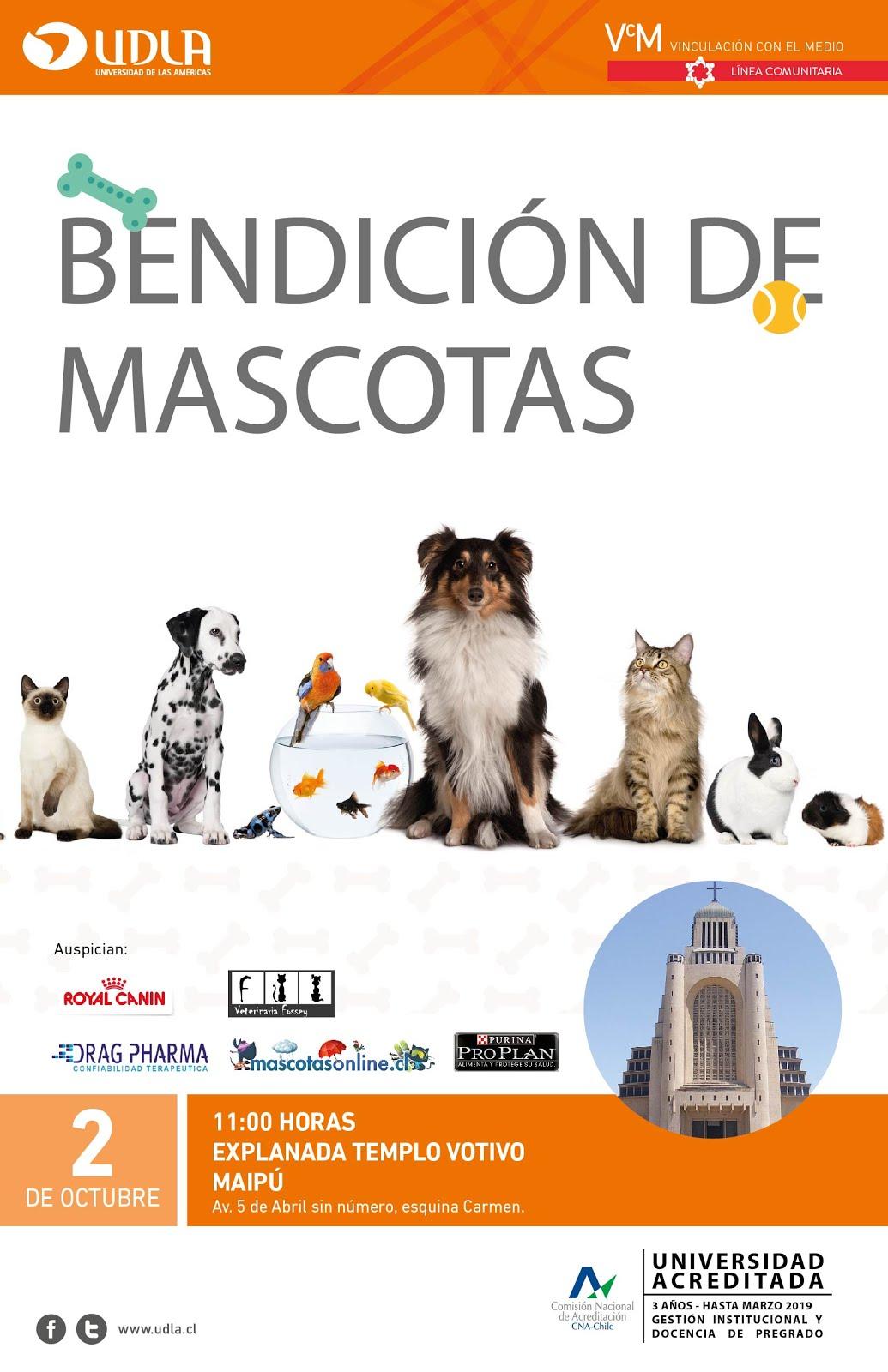 BENDICIÓN DE MASCOTAS DOMINGO 2 DE OCTUBRE 2016 TODOS INVITADOS!!!