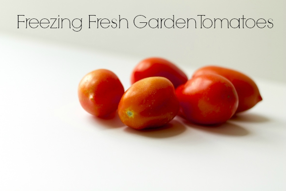 Freezing Fresh Heirloom Roma Tomatoes