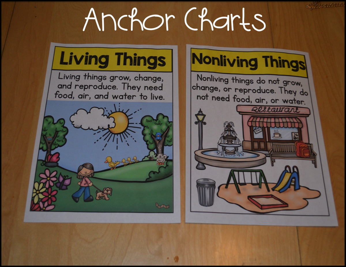 Living and nonliving update sarahs first grade snippets bloglovin living and nonliving update ccuart Images