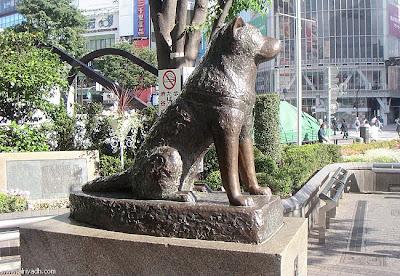 هاتشيكو .. الكلب الذي صنع له اليابنيون تمثالاً لوفائه ! 581565312109.jpg