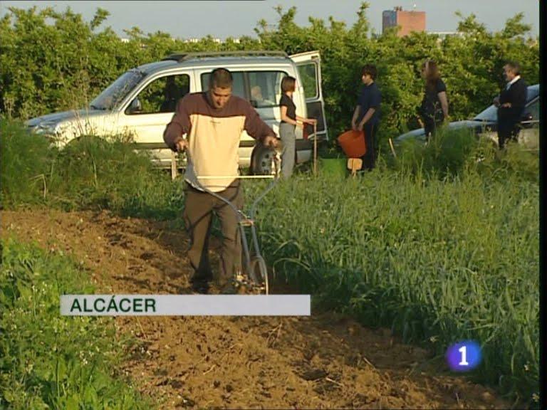 Jara jardiner a y paisajismo junio 2011 - Jardineria en valencia ...